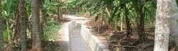 Beti Irrigation Project ,Tulihawa, Kapilvastu